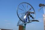 probelauf in dachsen, juni 2005
